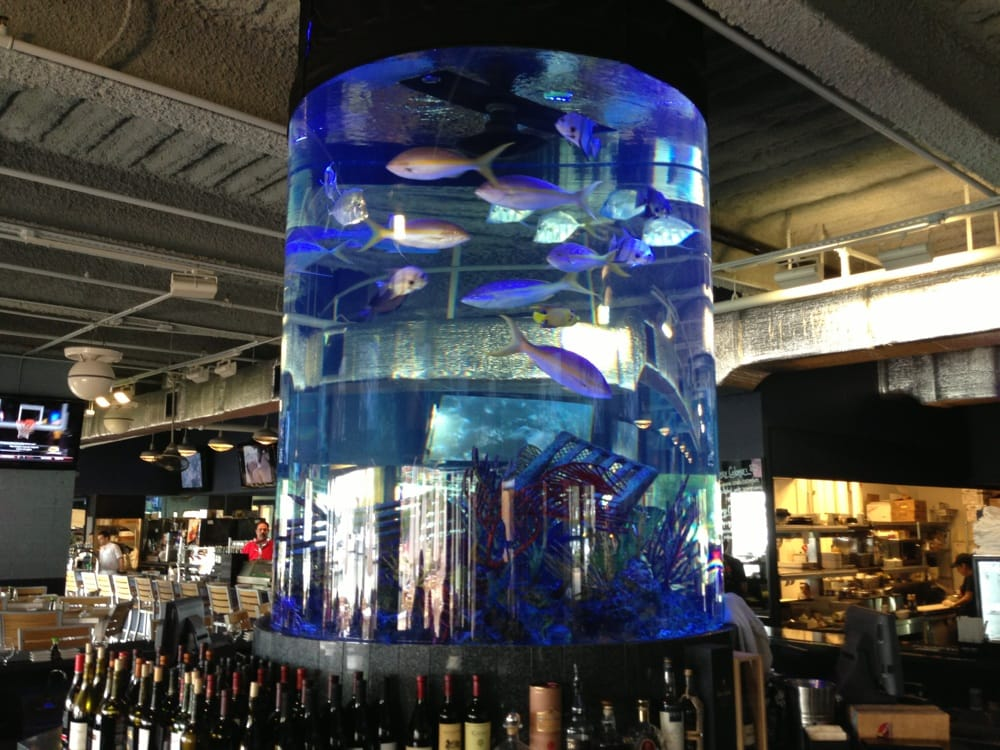 10. Dive Bar - Buzzing eatery offering sushi & a raw bar, plus an open-air bar with a big aquarium & marina views.Our faves: Crunchy Tuna Roll, Seafood Bacon Mac & Cheese, Chicken MilanasePrice: $$