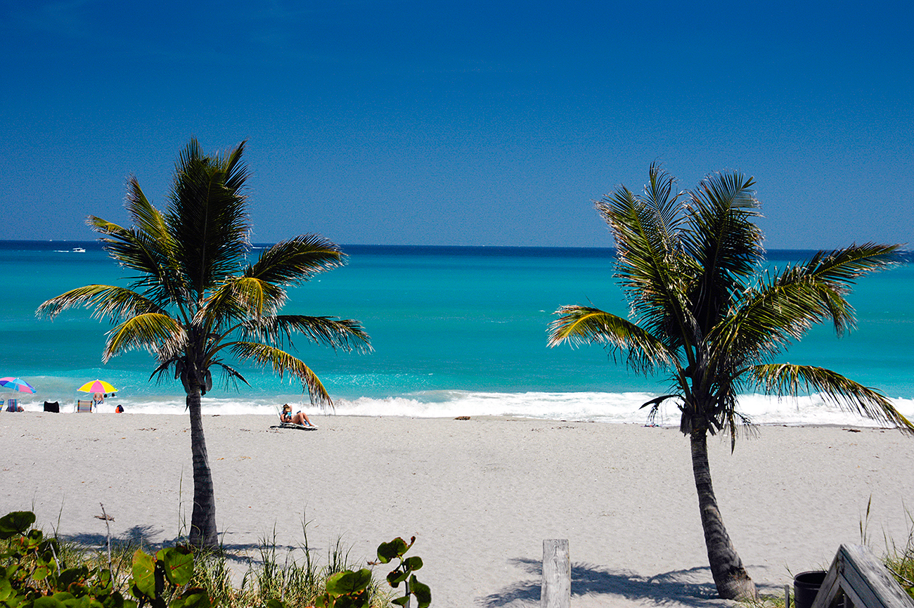 4. Beautiful Beaches - Try and find a better way to relax than spending an off day on one of our STUNNING beaches!… Don't worry, we'll wait! Jupiter has 4 miles of crystal clear water, white sand, and scenic views from any angle!
