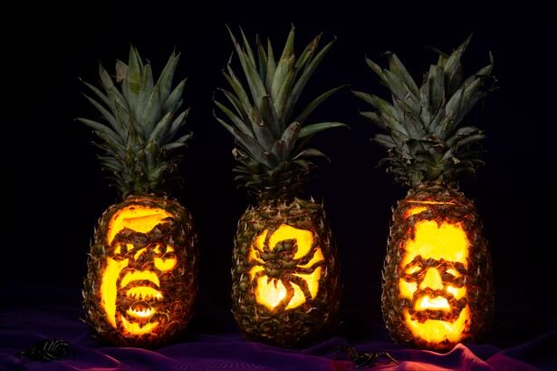pineapple blog photo.jpg