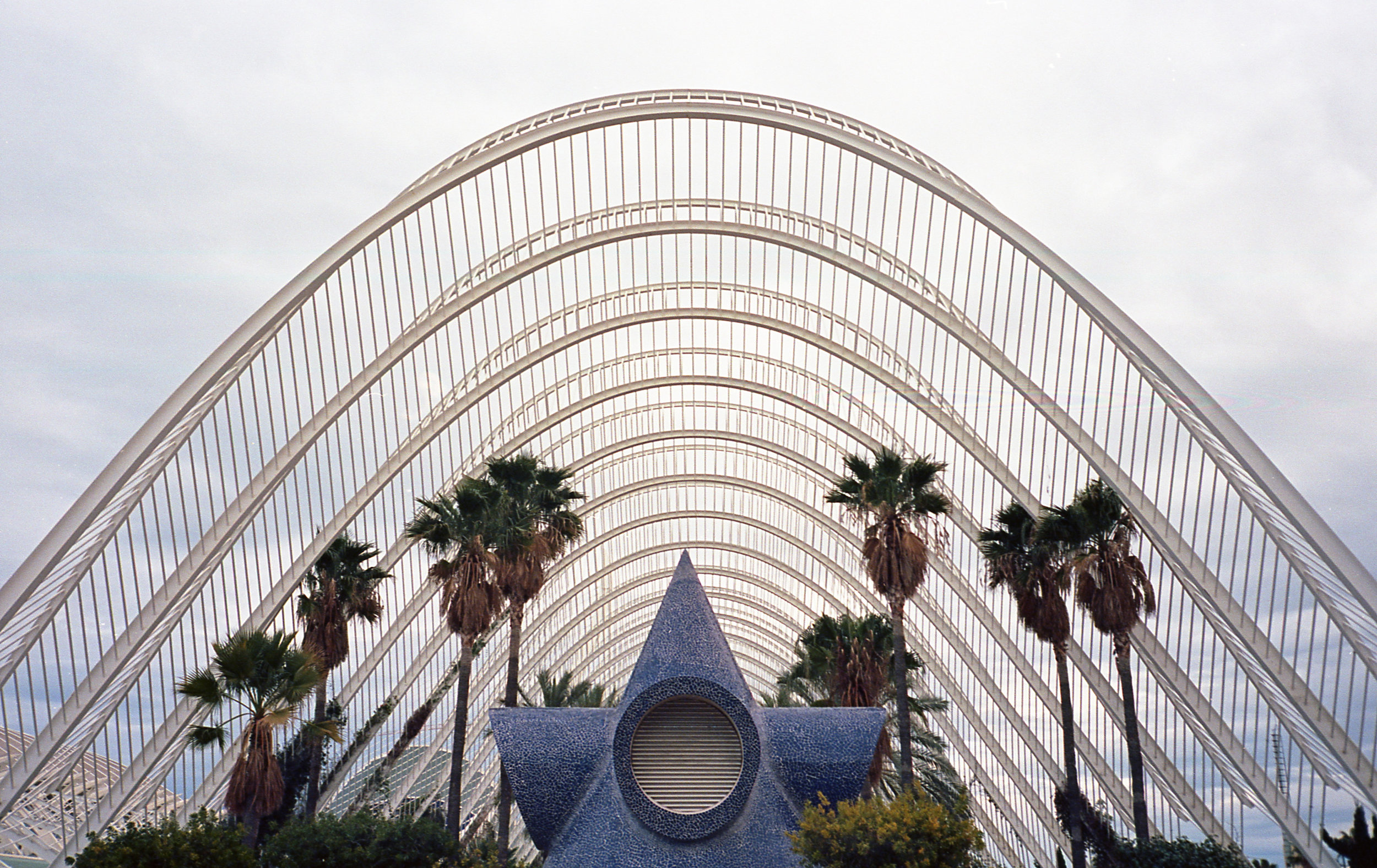 City of Arts and Sciences, L'Umbracle, Valencia, Nikon F3, Cinestill 50D