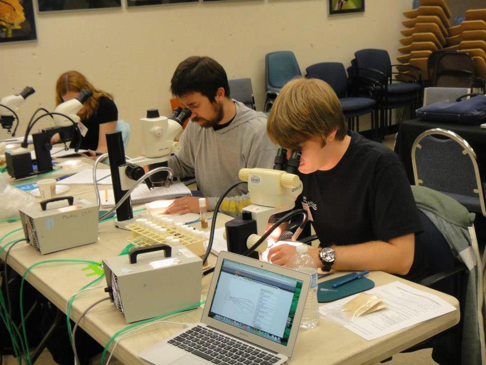 Drosophila Species Workshop, UCSD, CA. 2012