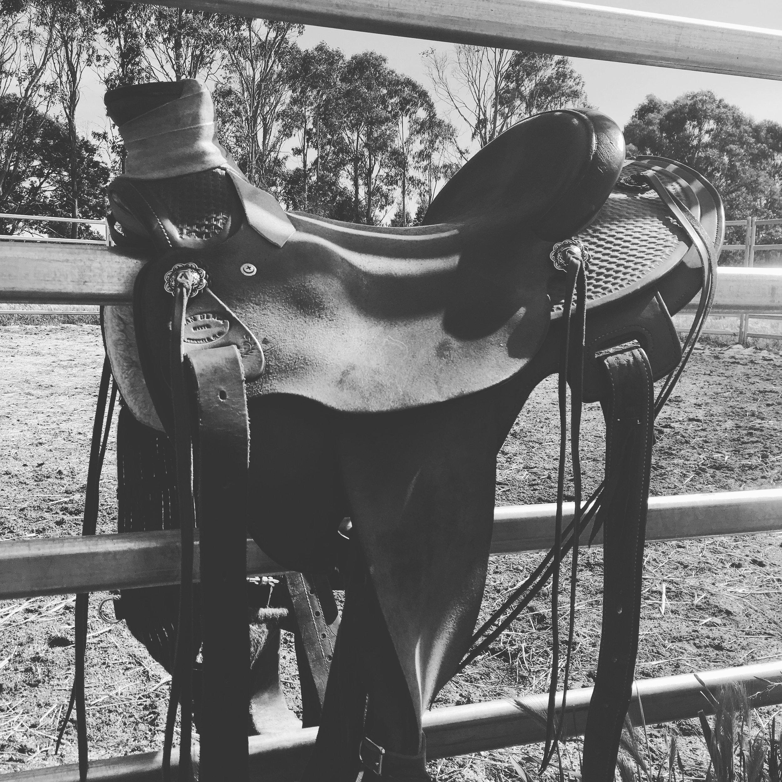 Love my new saddle