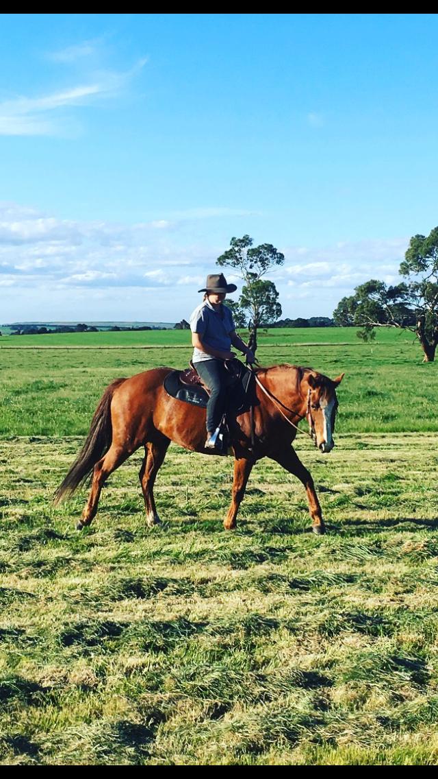 Horsemanship begins at home