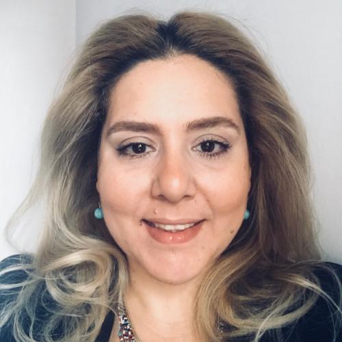 Dana Hady    Senior Consultant at IBM