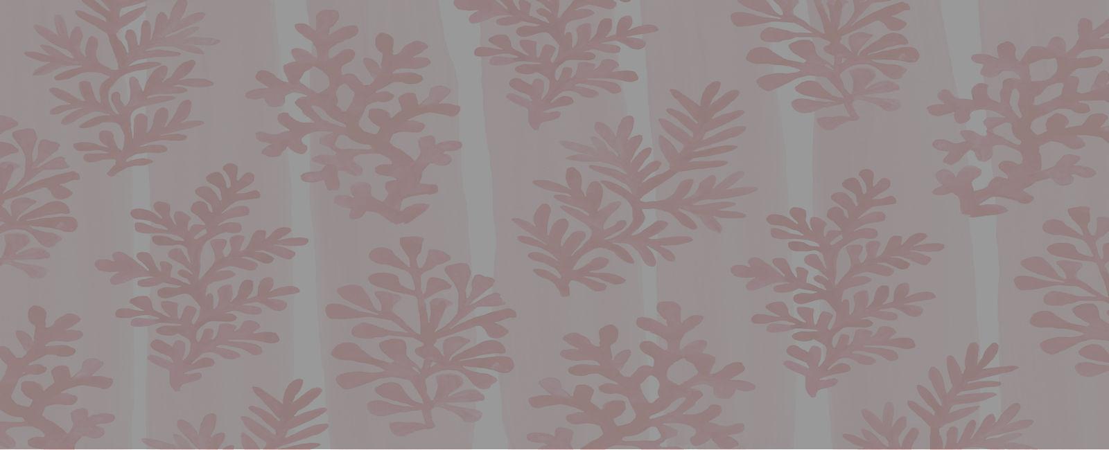 coral-background.jpg