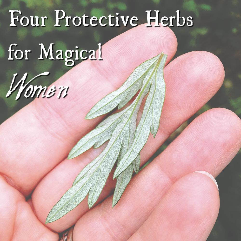Protective-Herbs-6-1.jpg