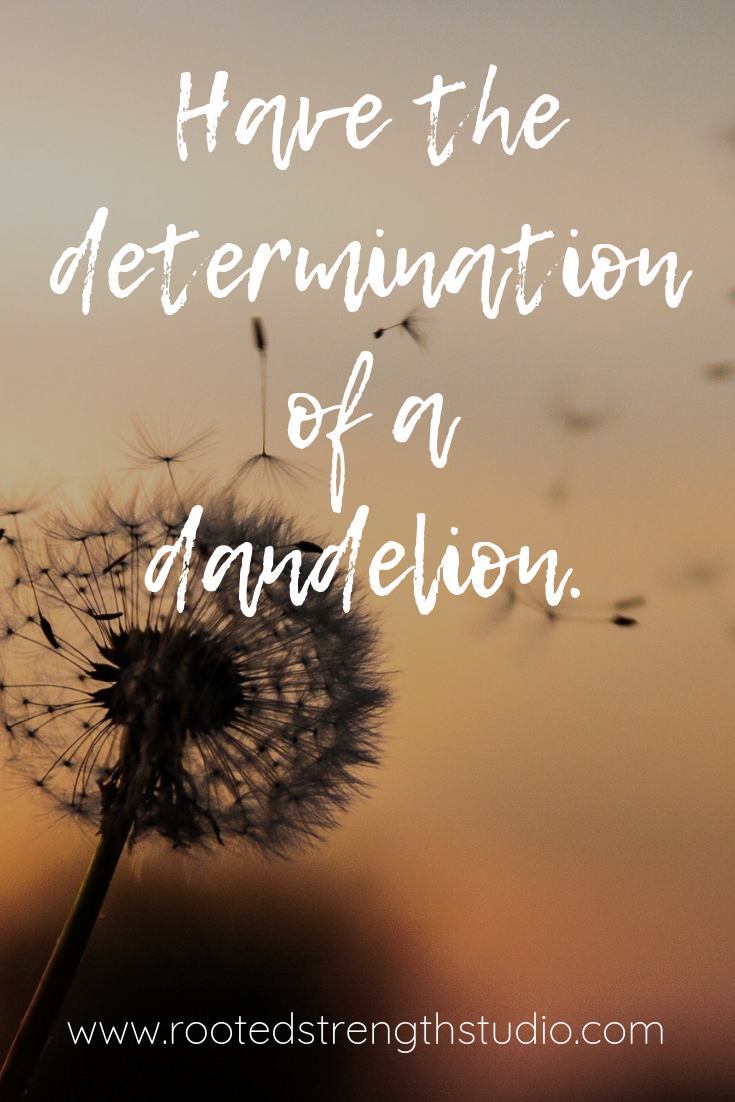 Have the determination of a dandelion..png