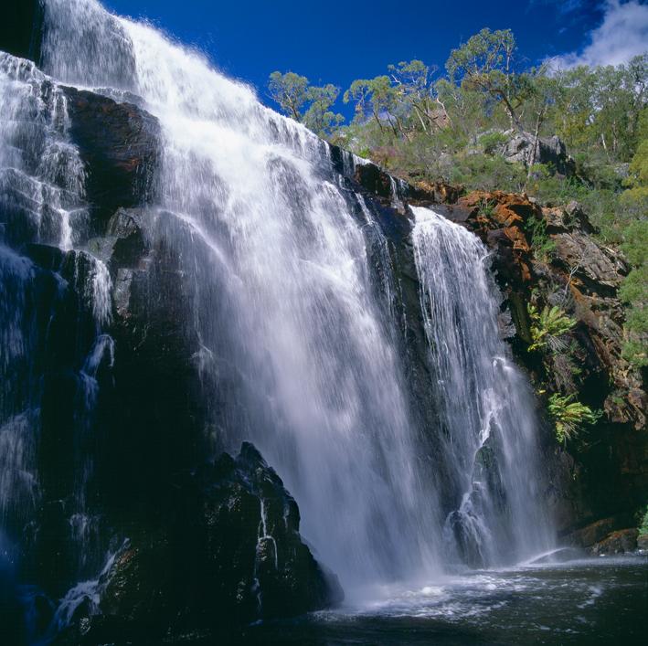 Banjul's Falls
