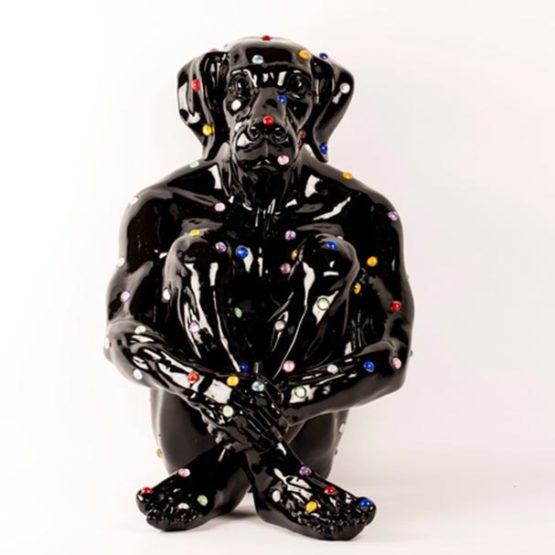 diamond-dog-black-1-555x555.jpg