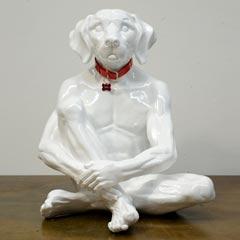 white lost dog.jpg