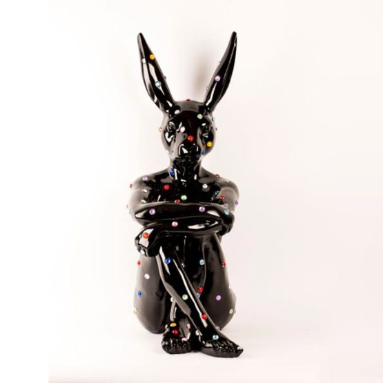 ruby-rabbit-black-1-555x555.jpg