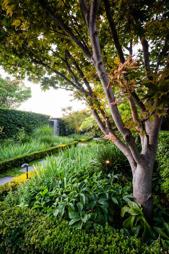 Design  Ian Barker Gardens