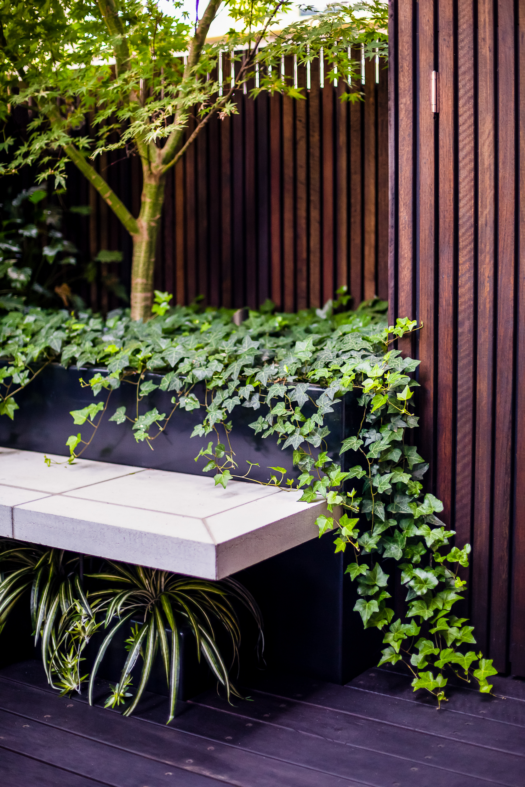 Design  Lisa Ellis Gardens