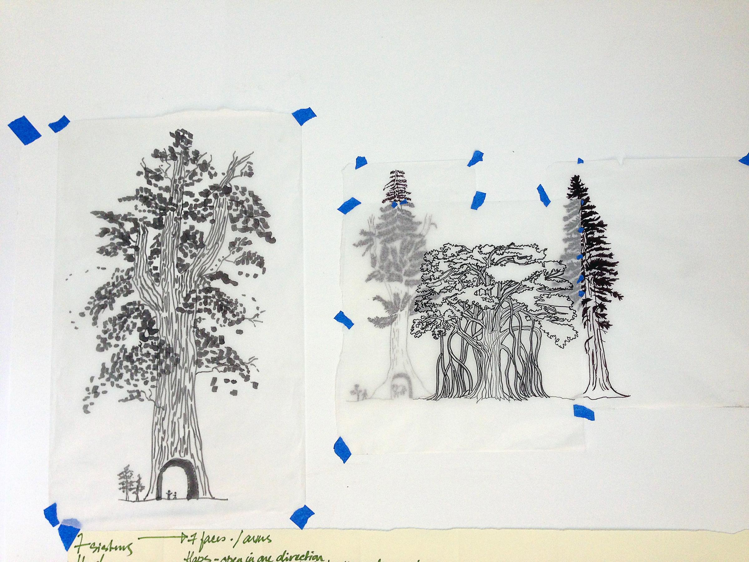 tree drawings for henna IMG_2276.jpg
