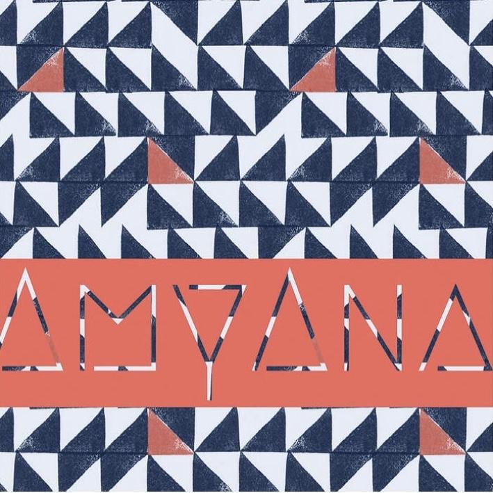 AmyAna Cover.jpg
