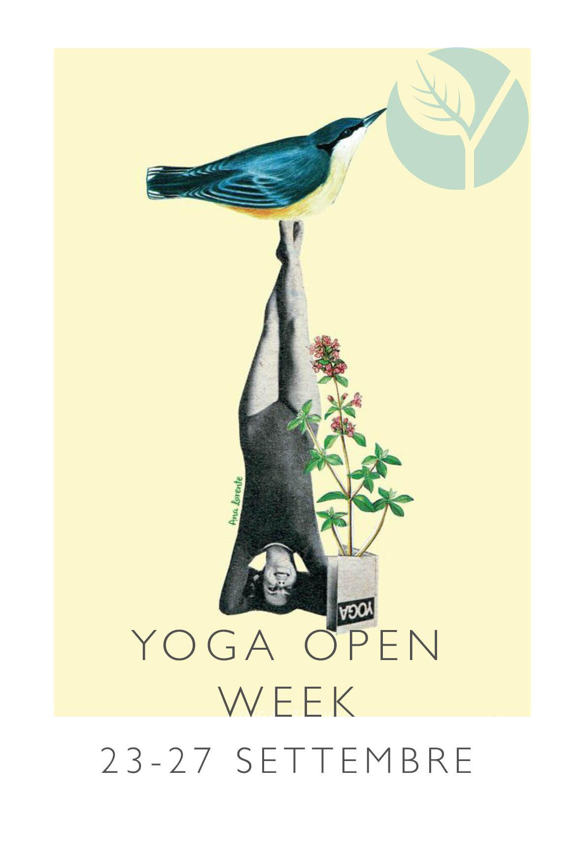 open week2019.jpg