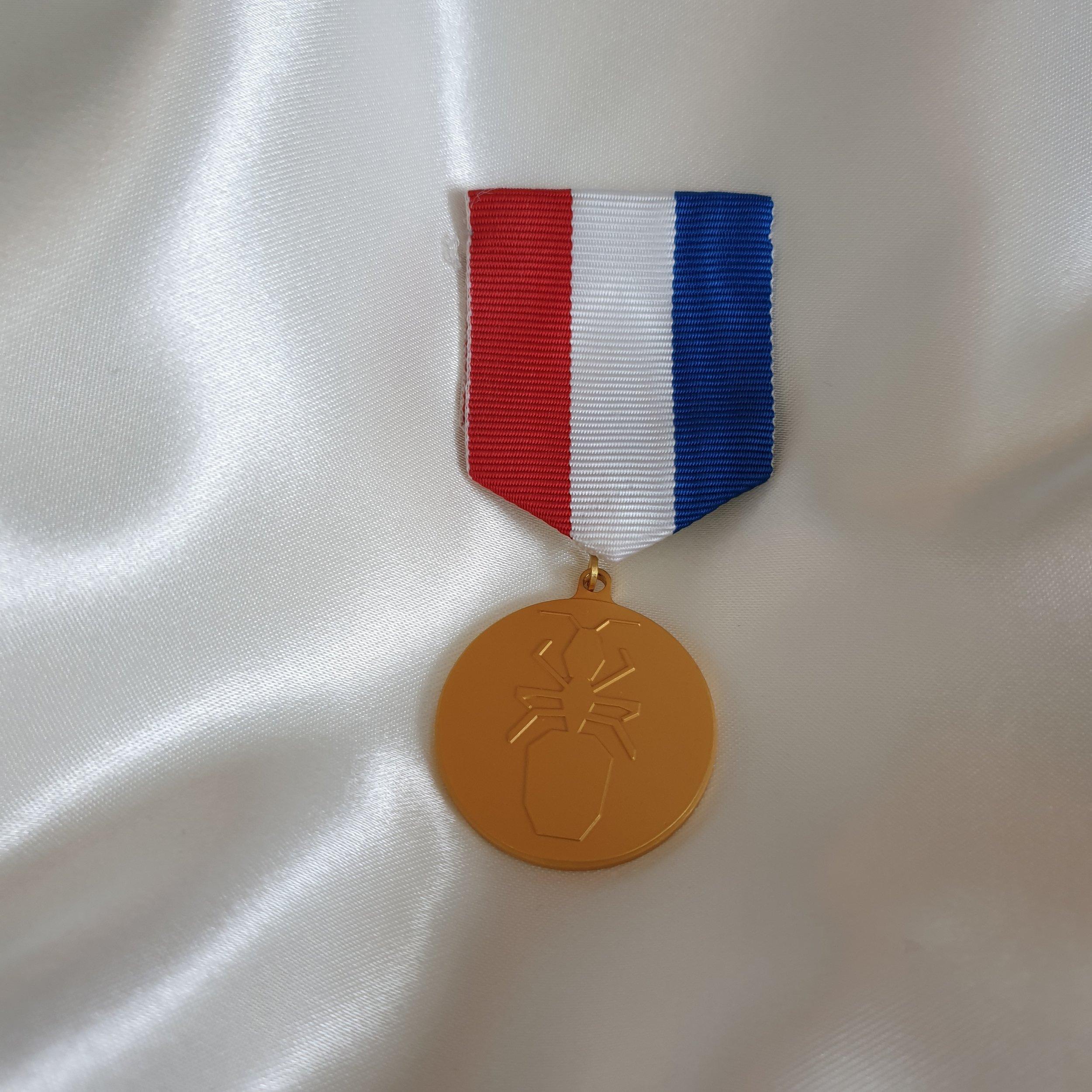 STYRELSEMEDALJEN  bärs av styrelseledamöter. I vissa fall bärs flera medaljer och varje medalj representerar ett år inom styrelsen.