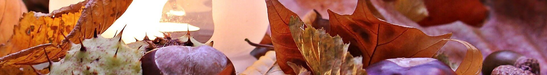 autumn-mood-1716257_1920.jpg
