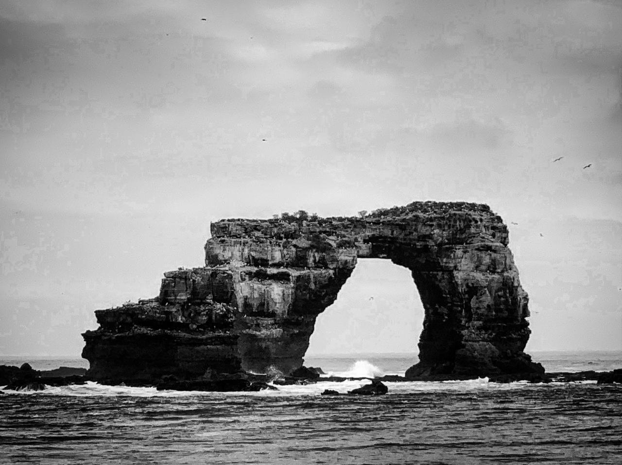Darwin's Arch and a rippling sea