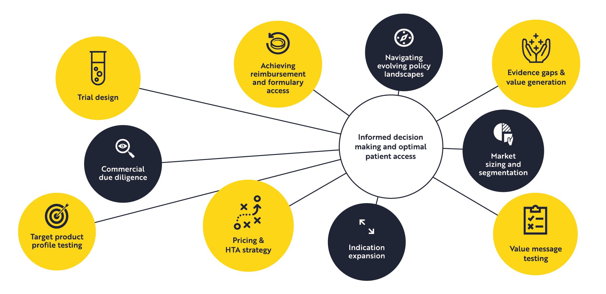 Information spider diagram-01.png
