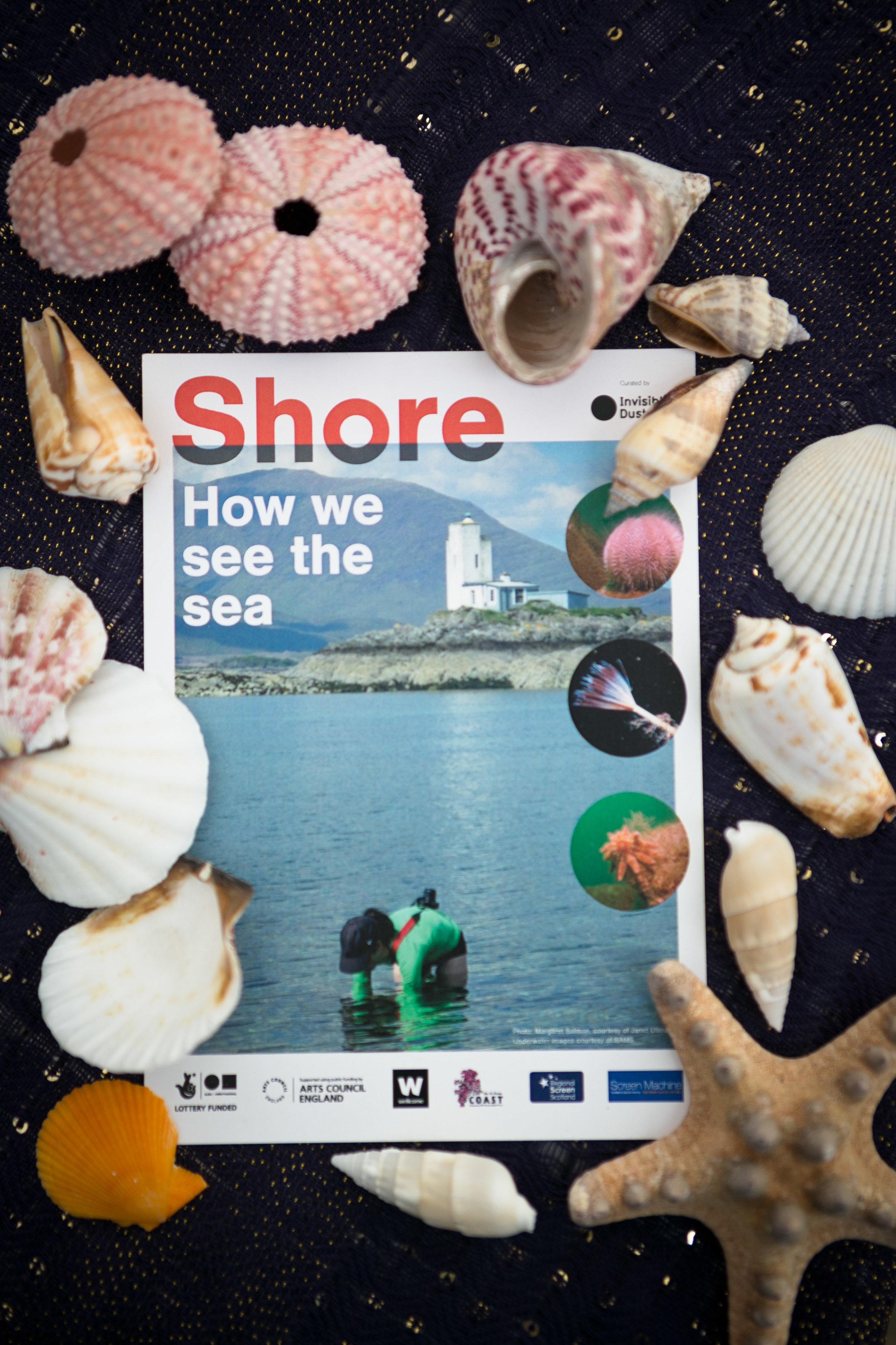 Shore19 Final - eoincarey_0676.jpg