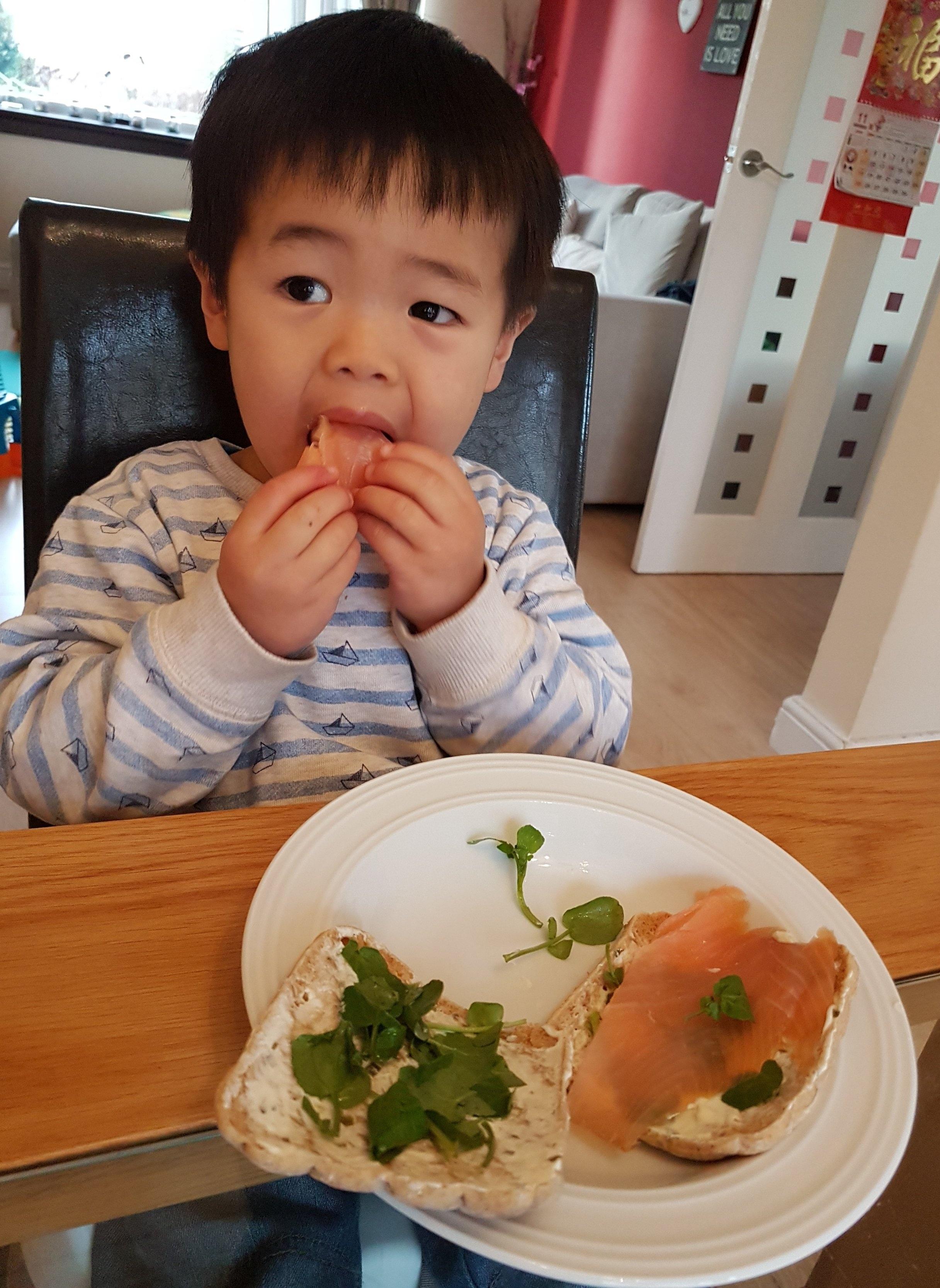 salmon+a+no+go.jpg