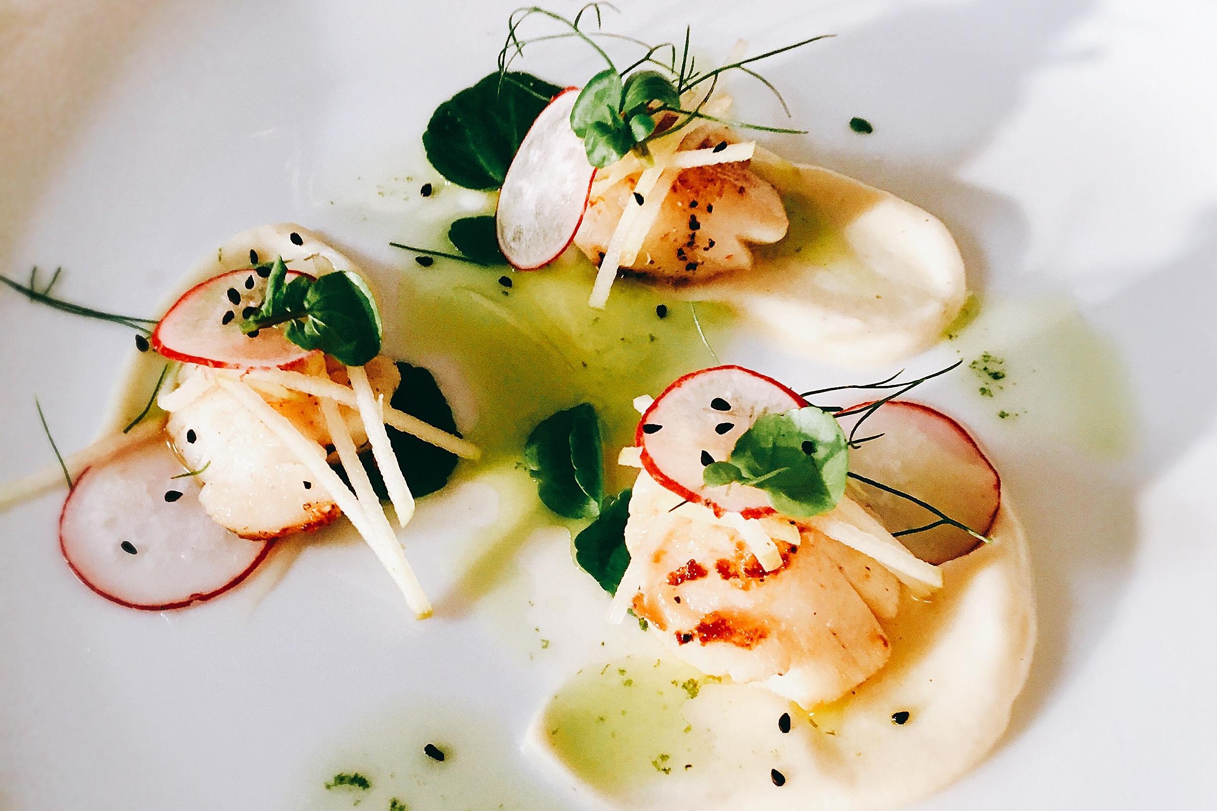 Steve's beautiful scallop dish