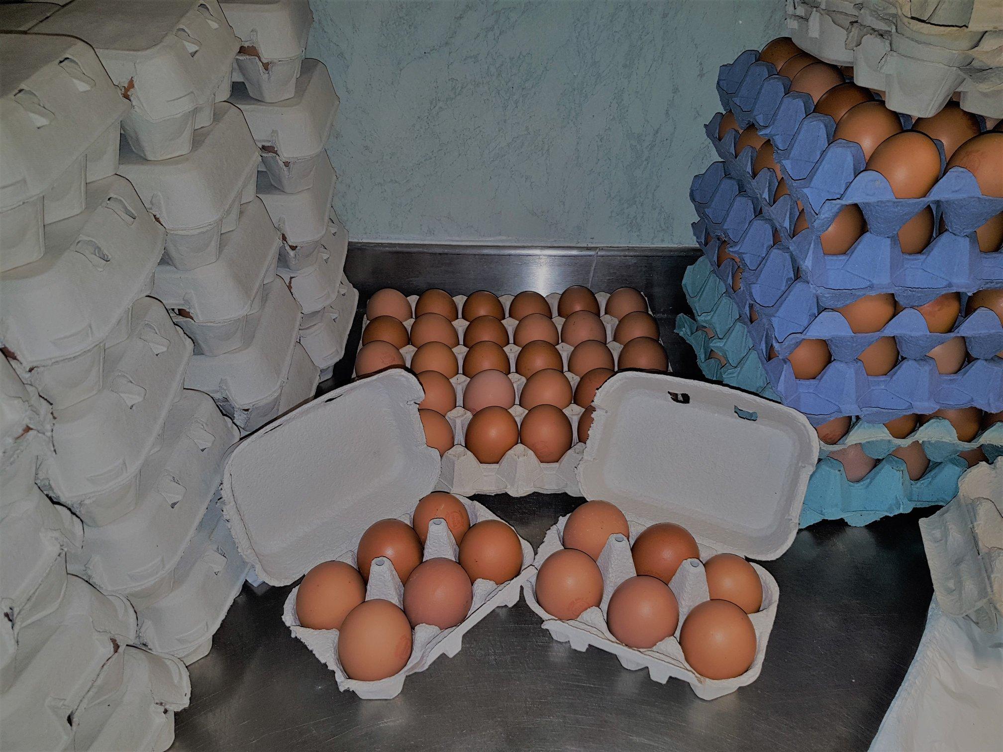 Farm Girl Eggs - Pink Aubergine Cupcakes.jpg