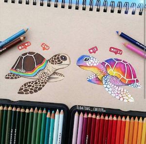 Instagram: @floating_colour