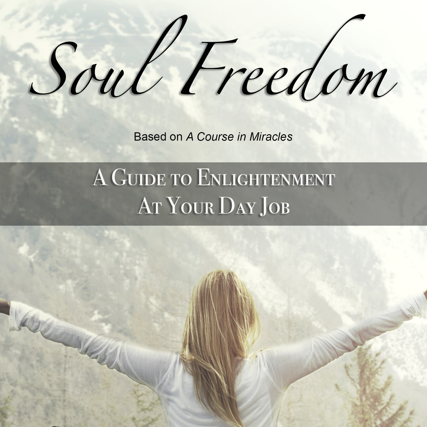 Soul Freedom : A Guide to Enlightenment At Your Day Job