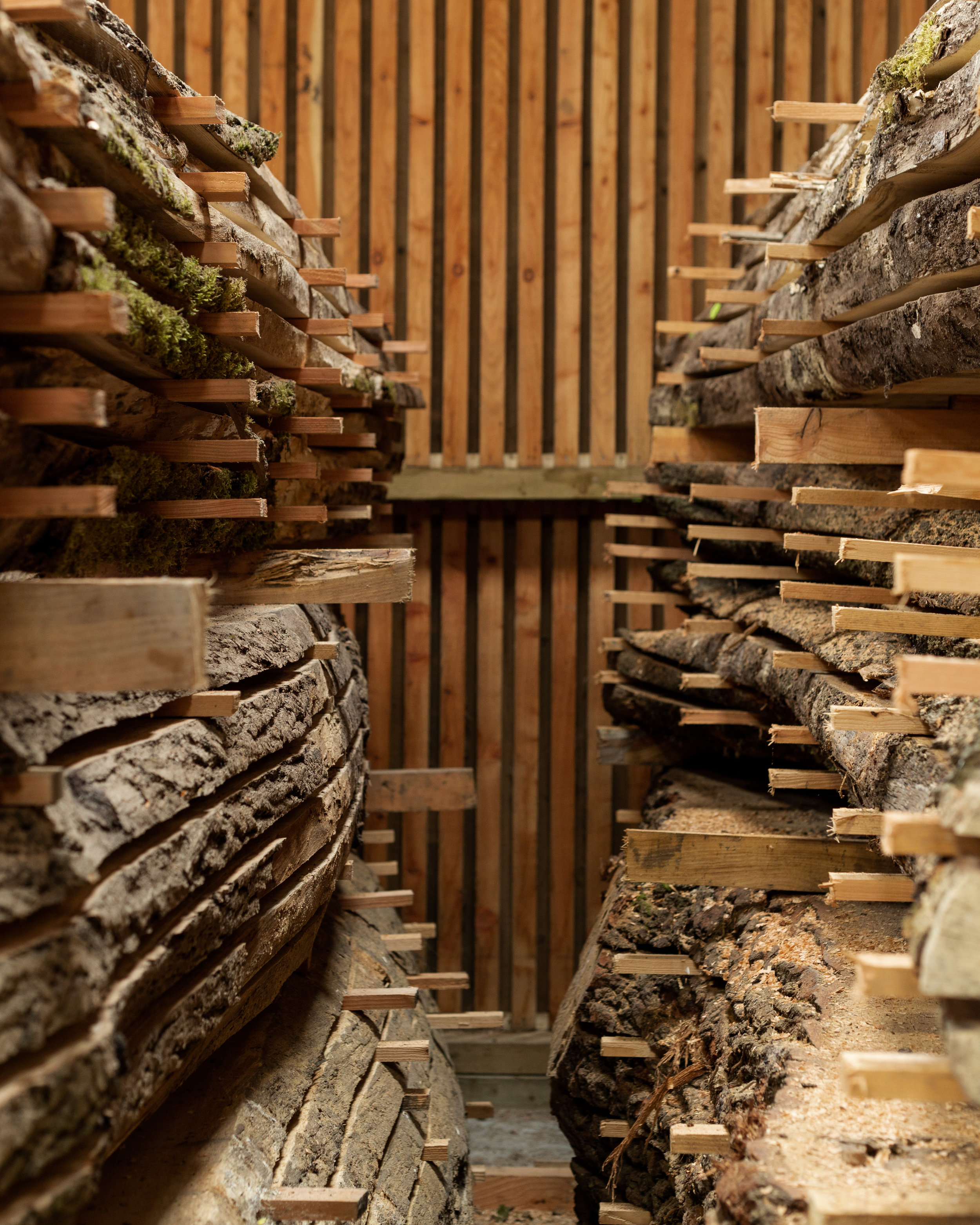 Tall stacks of milled timber, air-drying in the barn timber store at Argal Home Farm.