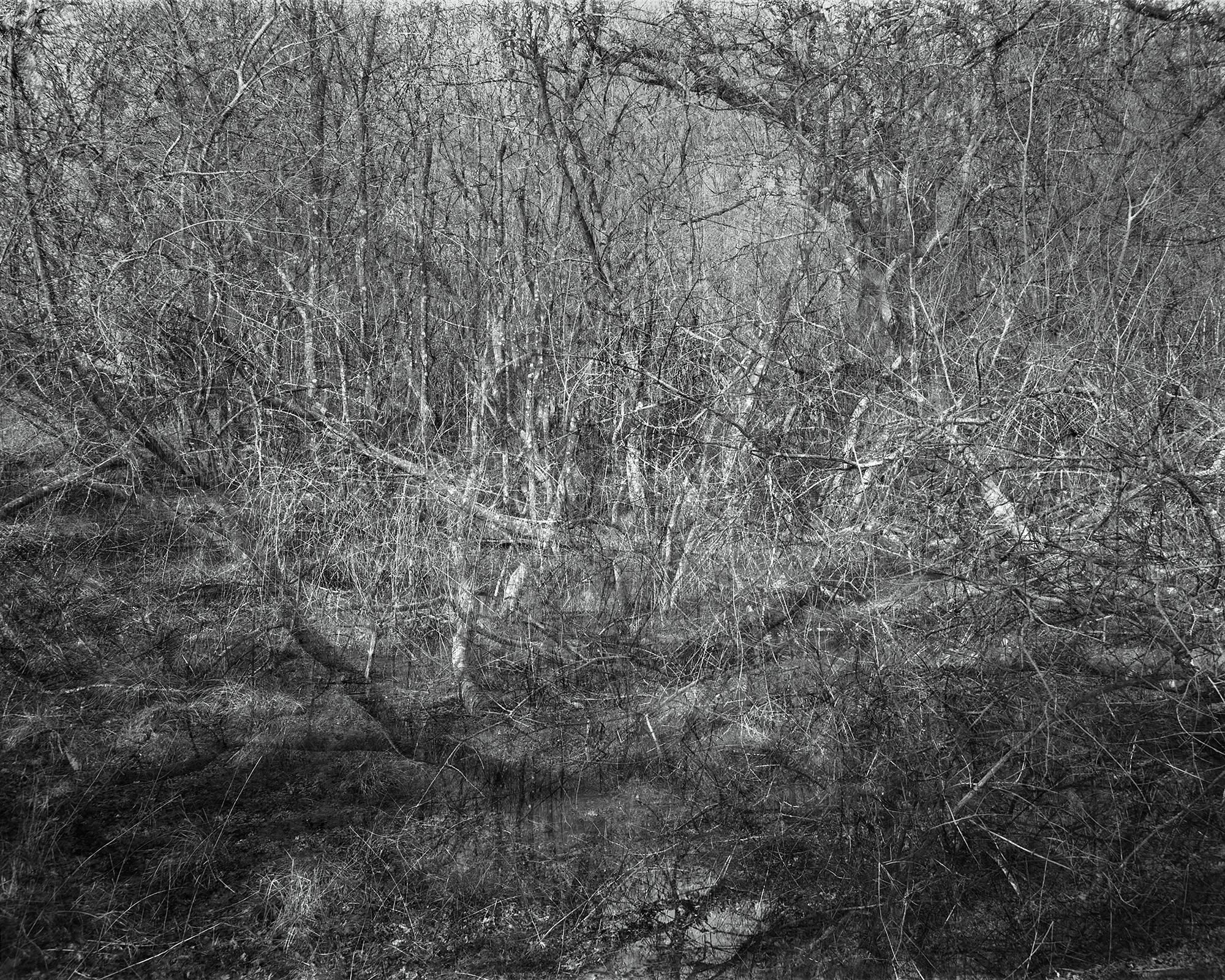 Photograph: Jonty Sale, 'SQUALLSMIRE #5'
