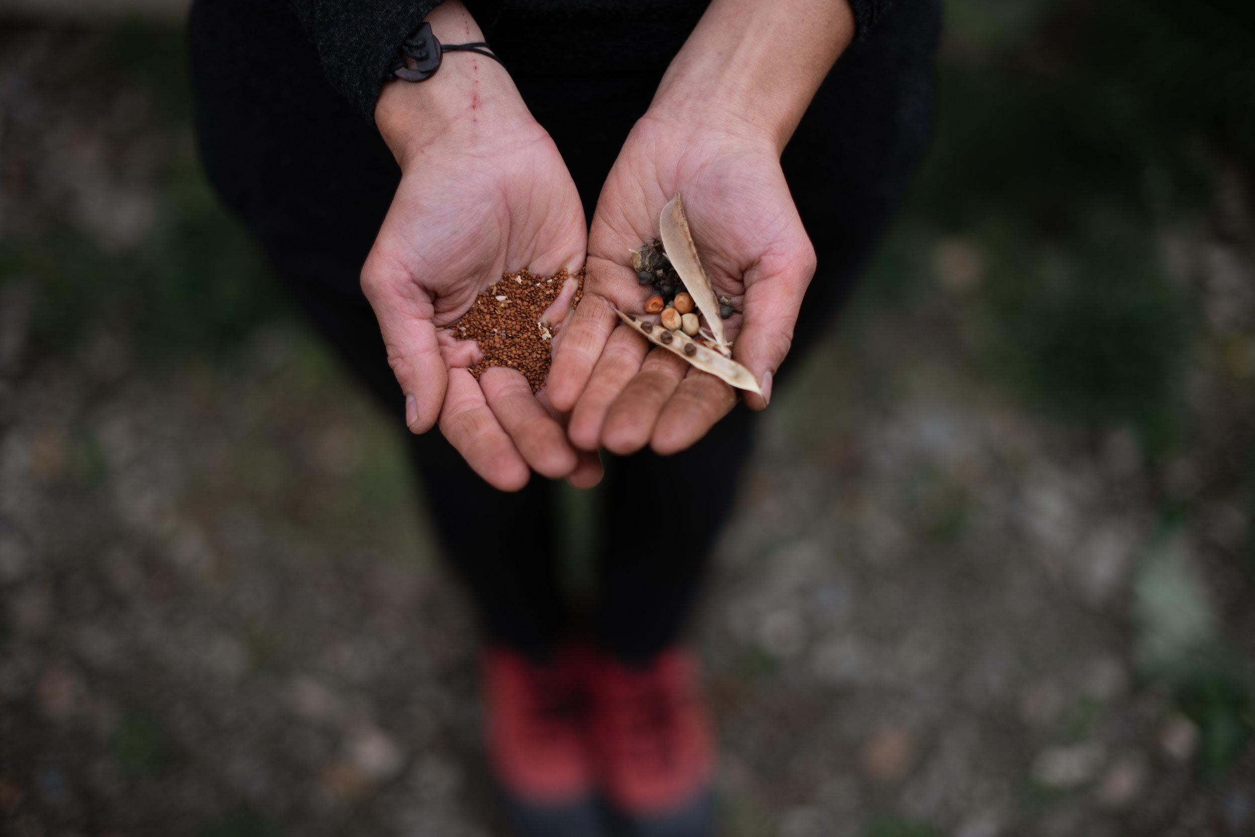 Moss and Mirth, North Okanagan, British Columbia. Vanessa Morris Photography.