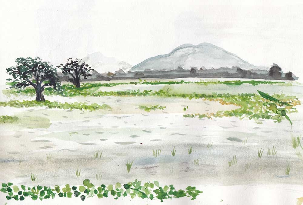 Tissamaharama Lake