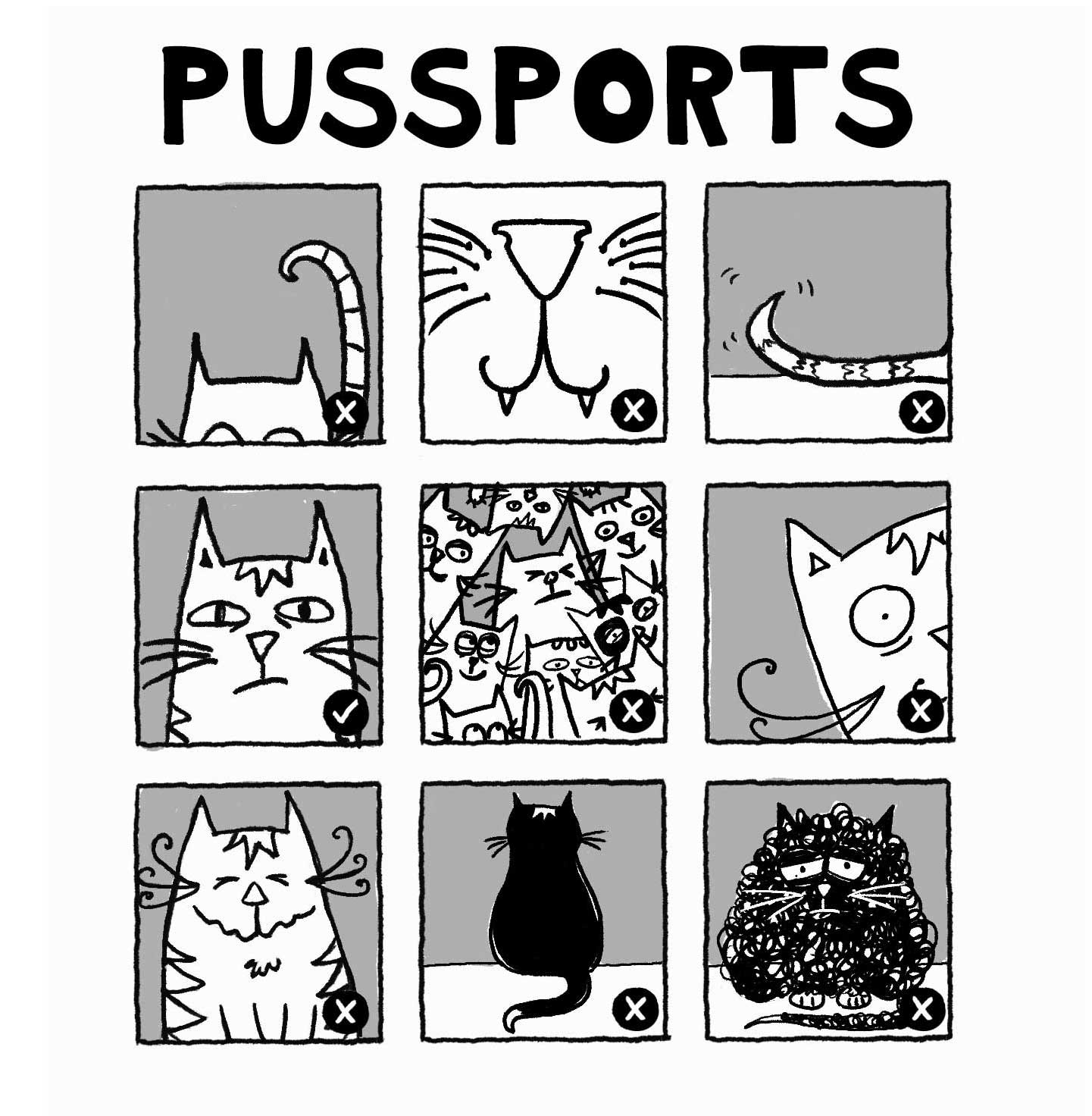 Pussports_square.jpg