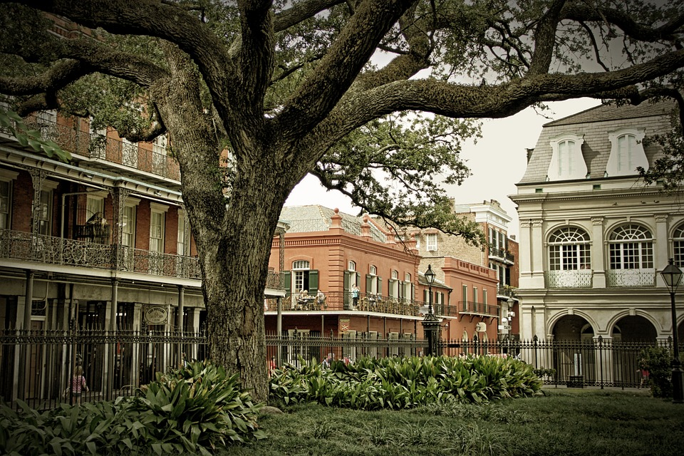 C4C New Orleans Image.jpg