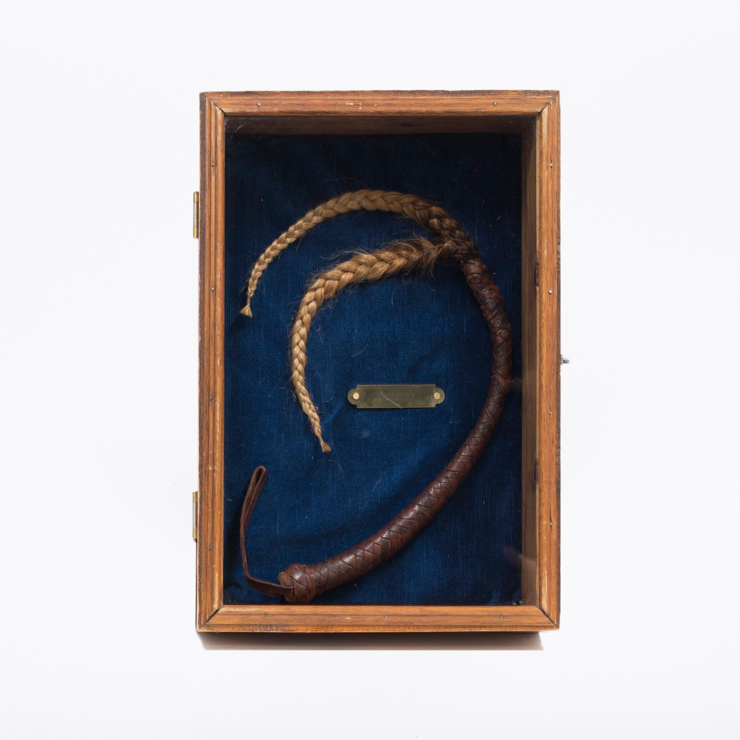 Meretrix whip   Museum of Sex Objects
