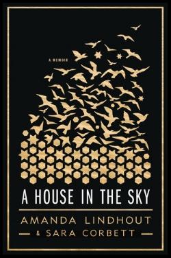 a-house-in-the-sky.jpg