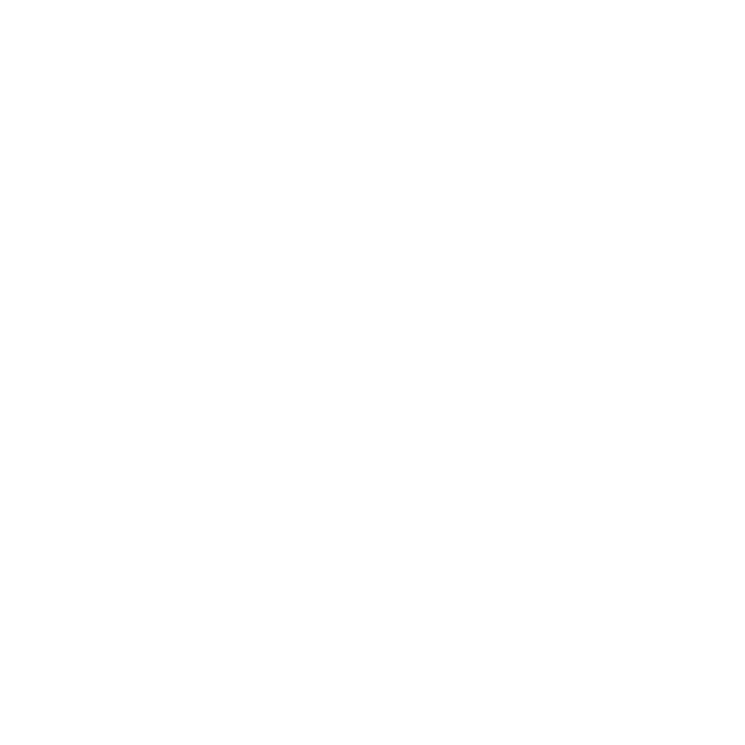 The Tampa Bay Storm