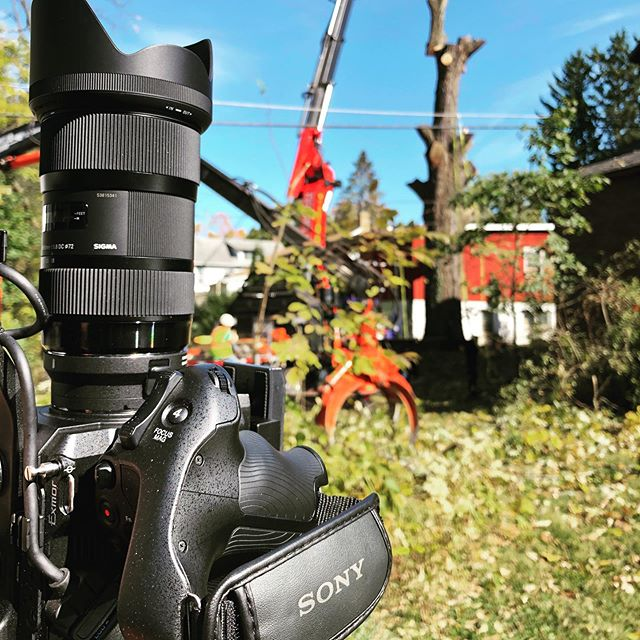 2 cranes! Day two with @cutting_edge_tree_pros ! #videoproduction #statecollege #trees #treeremoval #sony #sonyfs5