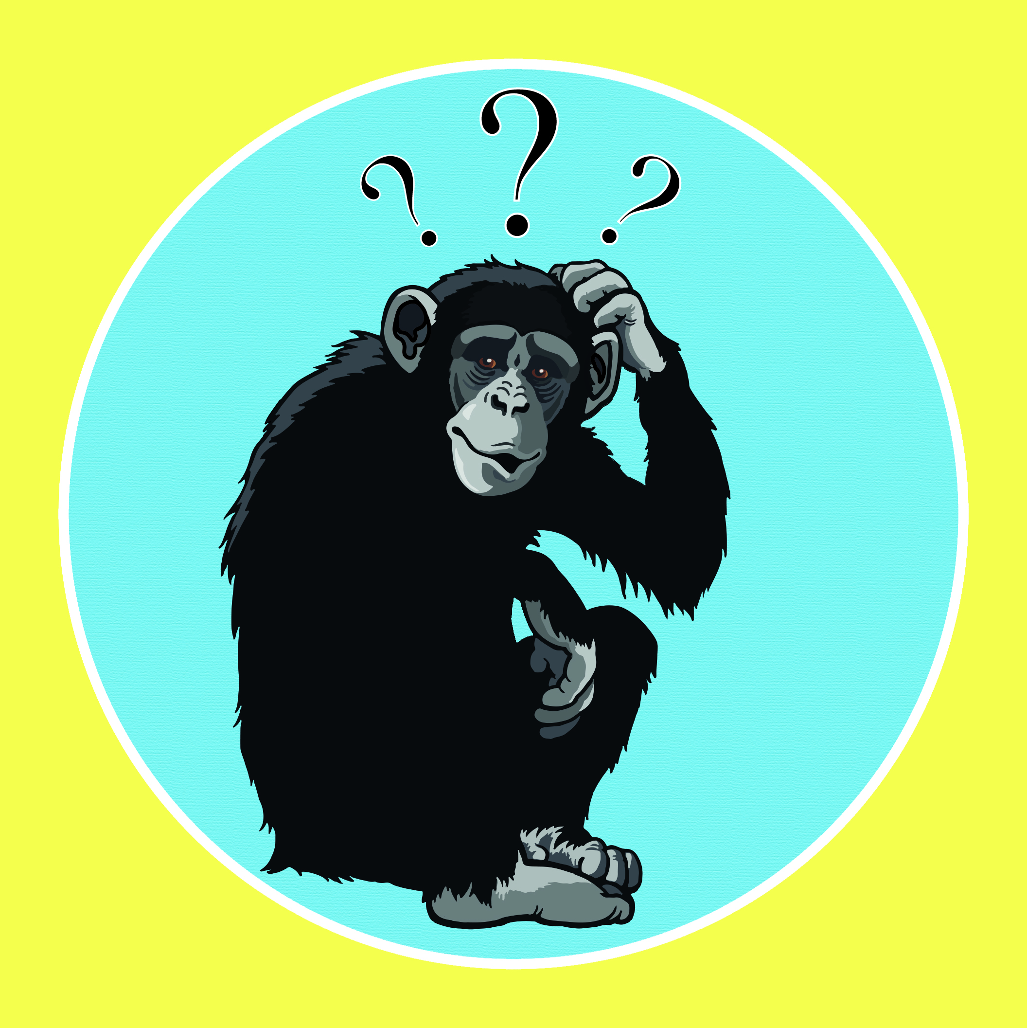 What is evolution? -