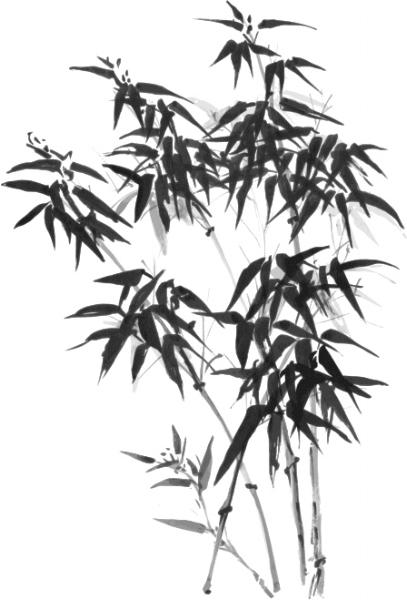 toriino-bamboo.jpg