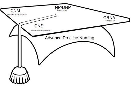 APRN Sub Groups Graphic.jpg