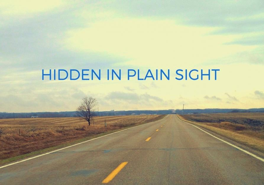 Hidden in Plain Sight - Sisters' networks and ministries break the cycle of human trafficking one life at a time.Written for Global Sisters Report.