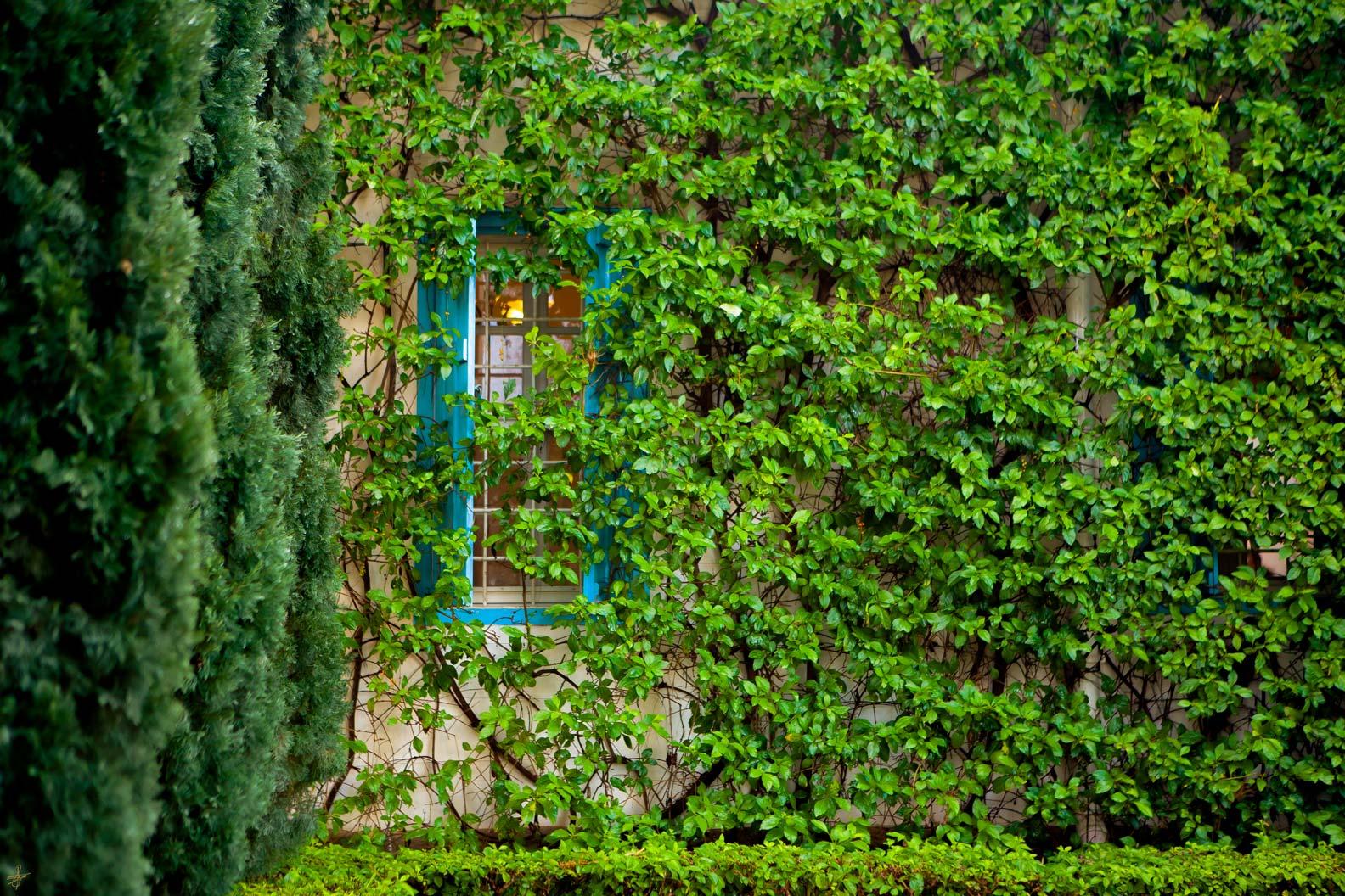 Shrine-of-Bahaullah-2.jpg