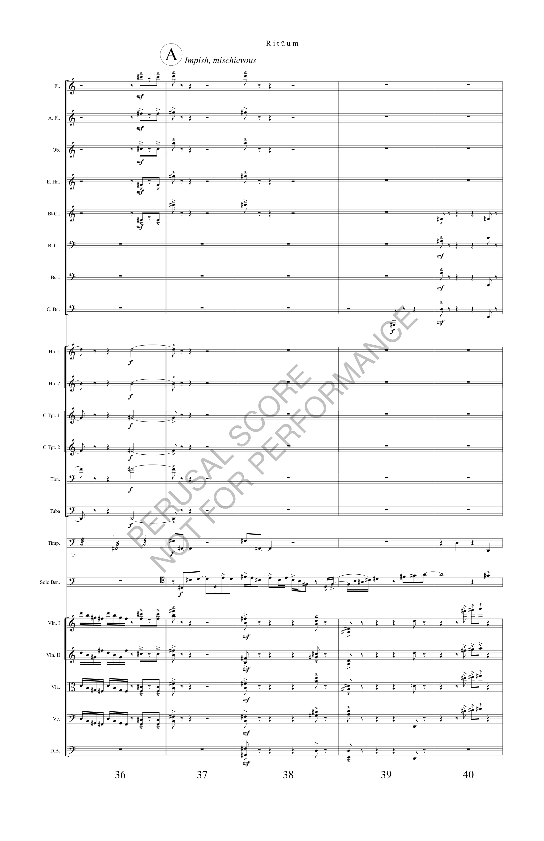 Boyd Rituum Score-watermark (1)-14.jpg