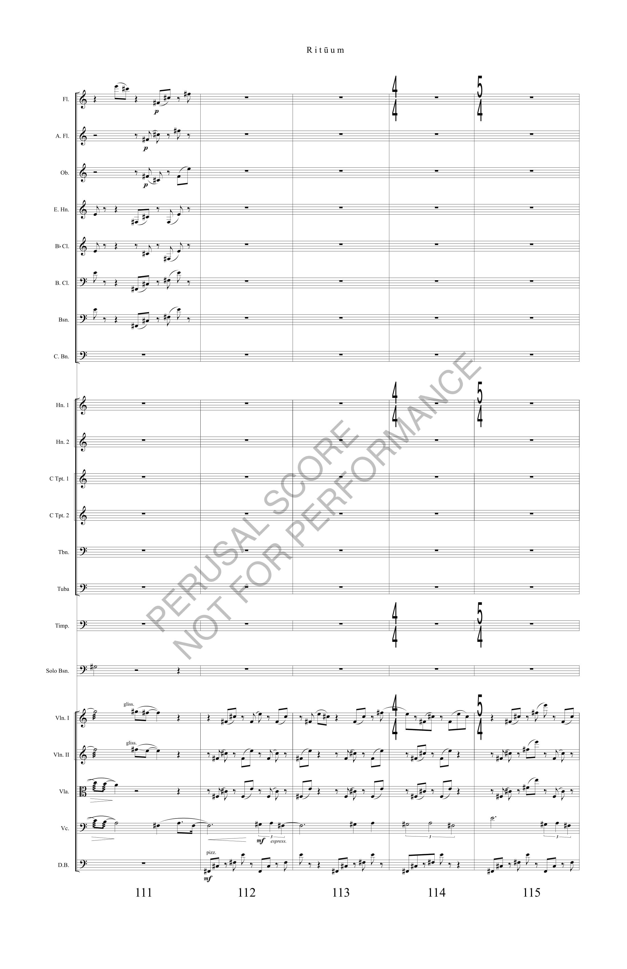 Boyd Rituum Score-watermark (1)-29.jpg