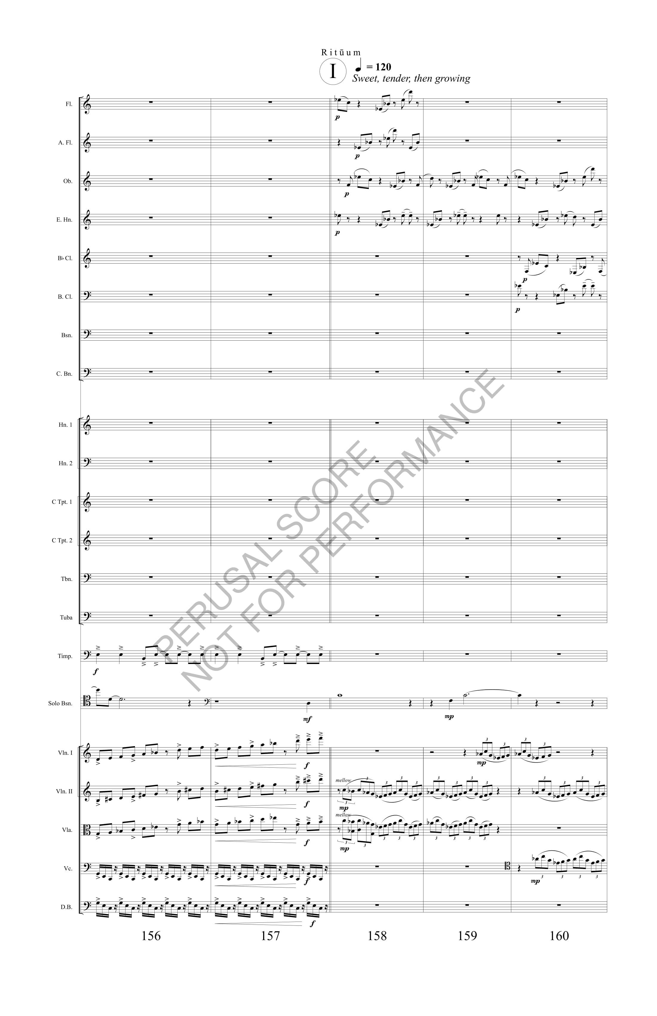 Boyd Rituum Score-watermark (1)-38.jpg
