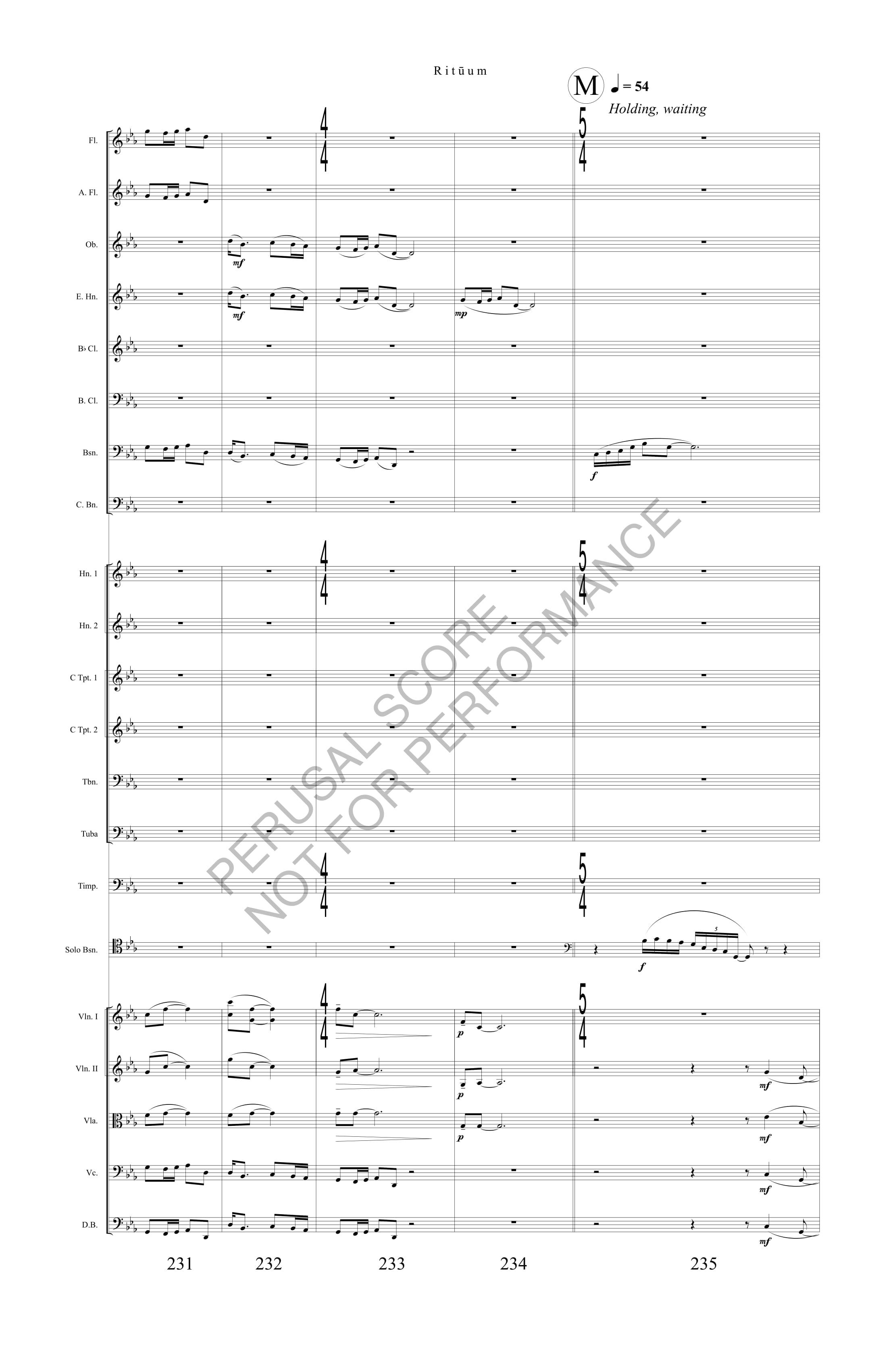 Boyd Rituum Score-watermark (1)-54.jpg