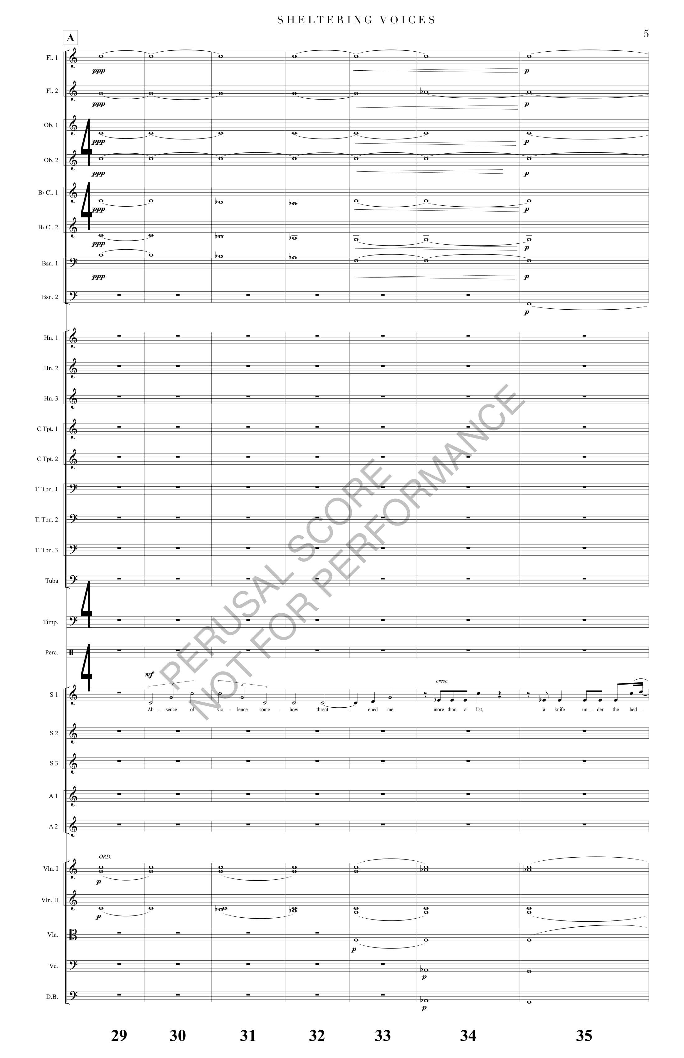 Boyd Sheltering Voices Score-watermark-13.jpg